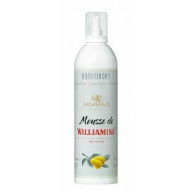 MOUSSE DE WILLIAMINE BOOSTERDRY 20% 35CL