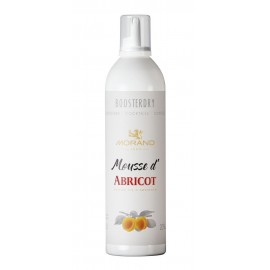 MOUSSE D'ABRICOT BOOSTERDRY 20% 35CL