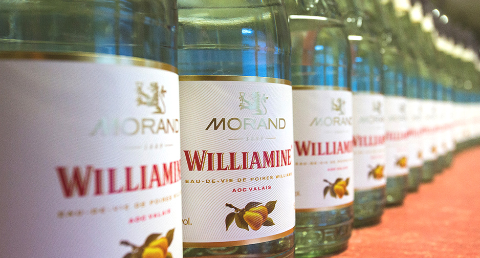 Your ultimate guide to Spirits online | Morand